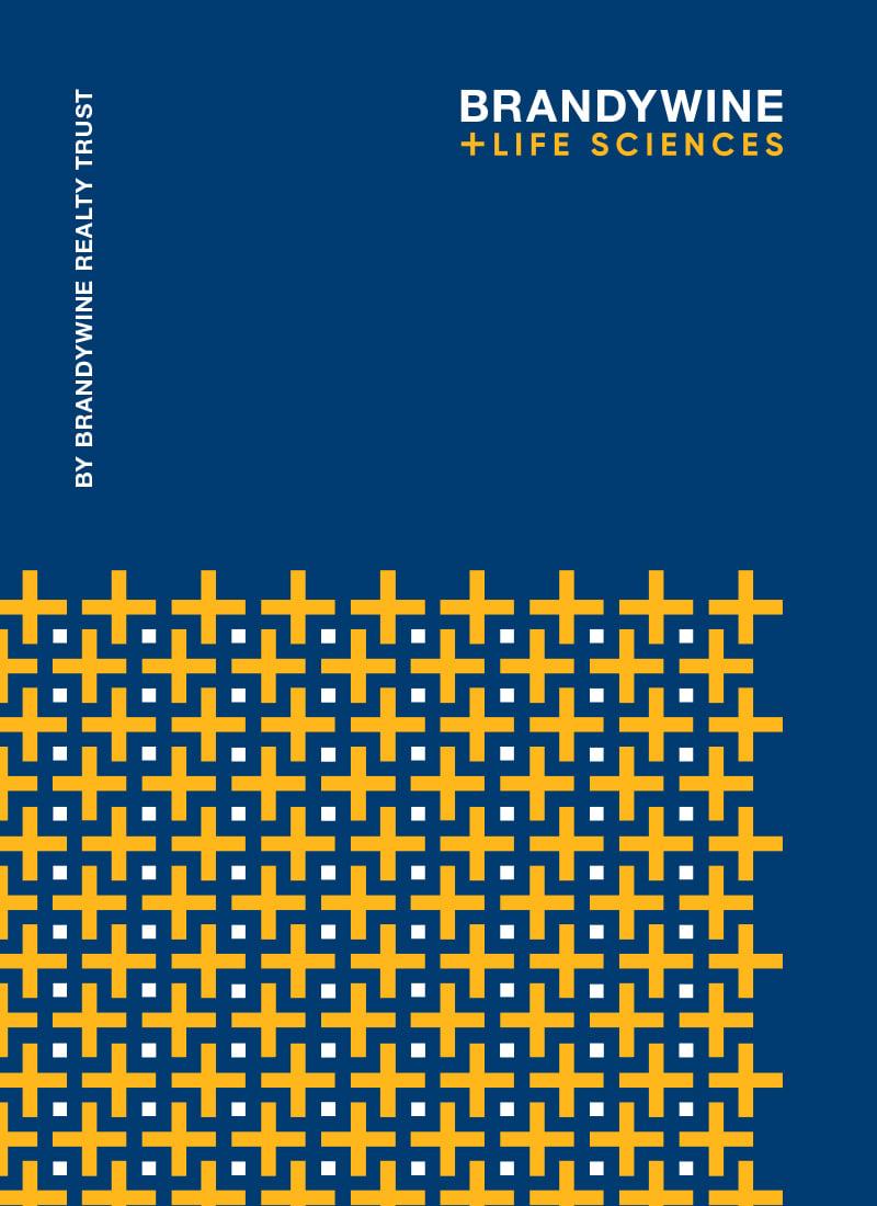 Brandywine Life Sciences brochure cover print